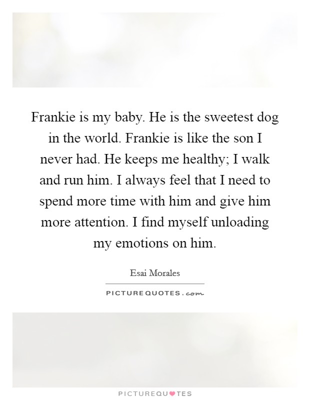 Frankie is my baby. He is the sweetest dog in the world. Frankie is like the son I never had. He keeps me healthy; I walk and run him. I always feel that I need to spend more time with him and give him more attention. I find myself unloading my emotions on him Picture Quote #1