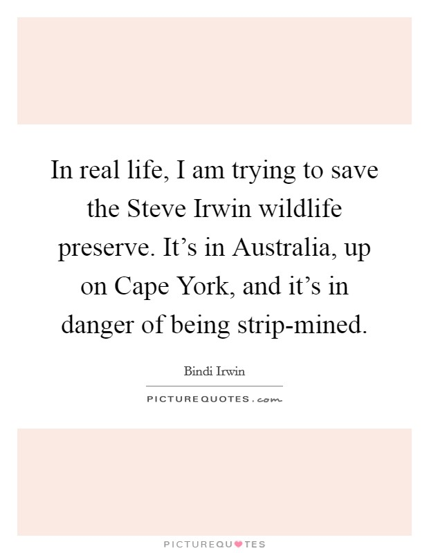 In real life, I am trying to save the Steve Irwin wildlife preserve. It's in Australia, up on Cape York, and it's in danger of being strip-mined Picture Quote #1