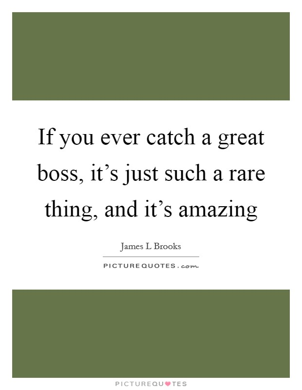 If you ever catch a great boss, it's just such a rare thing, and it's amazing Picture Quote #1
