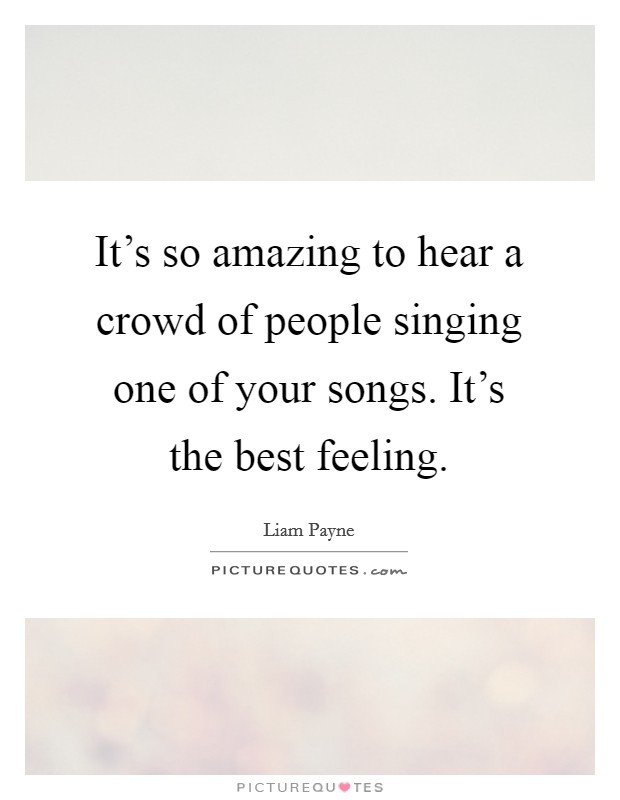 It's so amazing to hear a crowd of people singing one of your songs. It's the best feeling Picture Quote #1