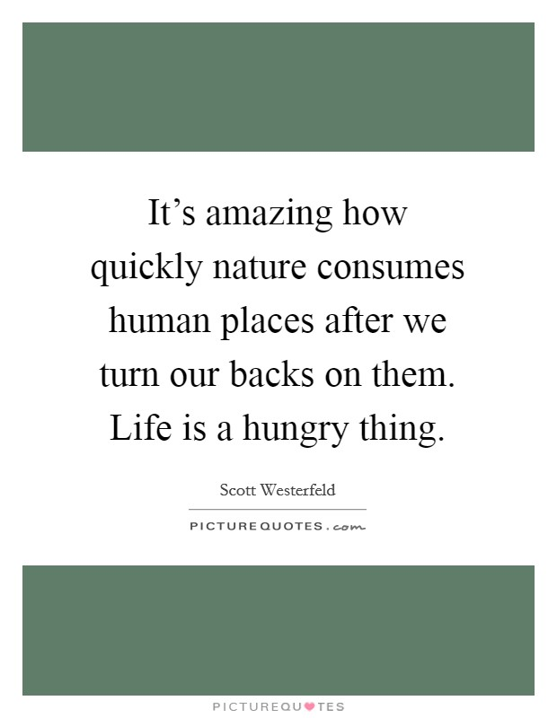 It's amazing how quickly nature consumes human places after we turn our backs on them. Life is a hungry thing Picture Quote #1