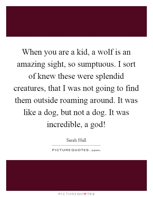 When you are a kid, a wolf is an amazing sight, so sumptuous. I sort of knew these were splendid creatures, that I was not going to find them outside roaming around. It was like a dog, but not a dog. It was incredible, a god! Picture Quote #1