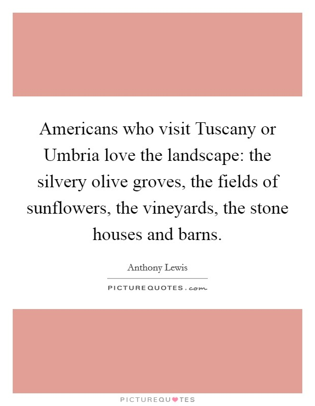Americans who visit Tuscany or Umbria love the landscape: the silvery olive groves, the fields of sunflowers, the vineyards, the stone houses and barns Picture Quote #1