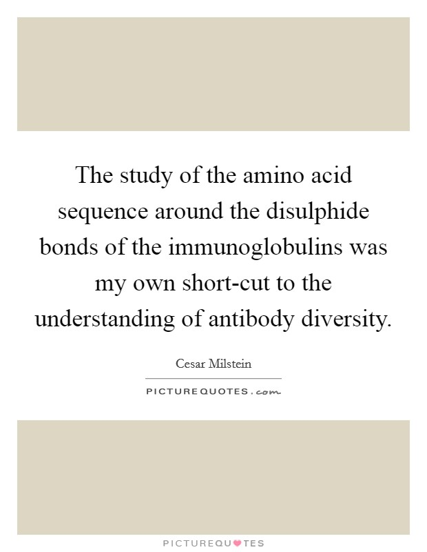 The study of the amino acid sequence around the disulphide bonds of the immunoglobulins was my own short-cut to the understanding of antibody diversity Picture Quote #1