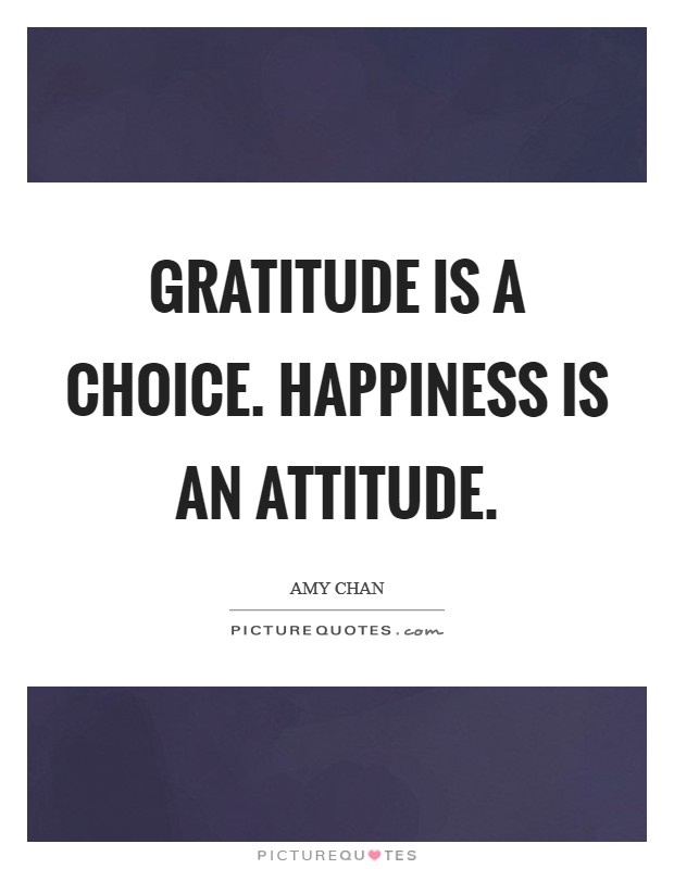 Gratitude is a choice. Happiness is an attitude Picture Quote #1