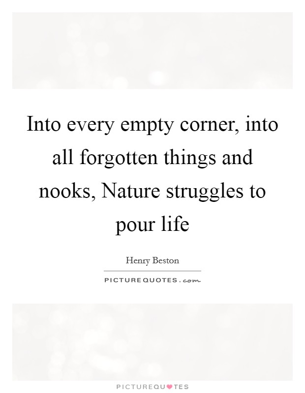 Into every empty corner, into all forgotten things and nooks, Nature struggles to pour life Picture Quote #1