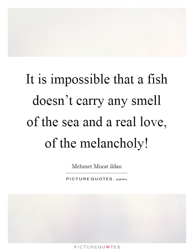 It is impossible that a fish doesn't carry any smell of the sea and a real love, of the melancholy! Picture Quote #1