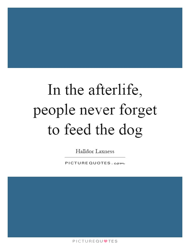 In the afterlife, people never forget to feed the dog Picture Quote #1