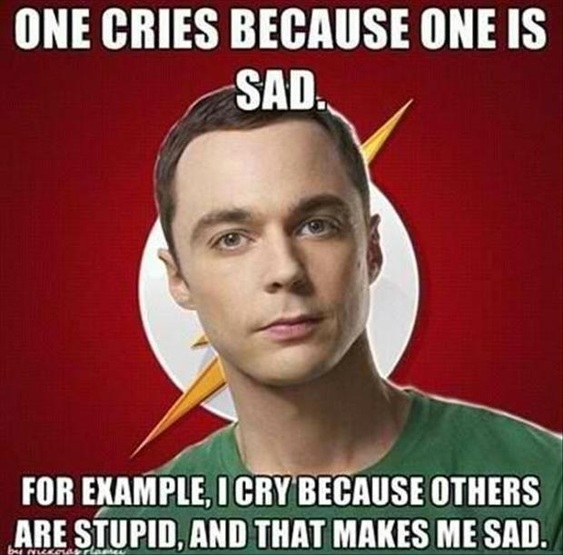 One cries because one is sad. For example, I cry because others are stupid, and that makes me sad Picture Quote #1