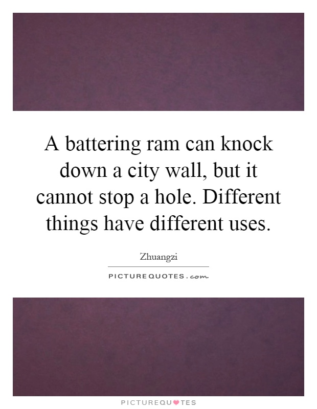 A battering ram can knock down a city wall, but it cannot stop a hole. Different things have different uses Picture Quote #1