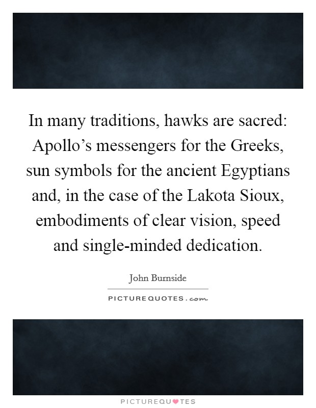 In many traditions, hawks are sacred: Apollo's messengers for the Greeks, sun symbols for the ancient Egyptians and, in the case of the Lakota Sioux, embodiments of clear vision, speed and single-minded dedication Picture Quote #1