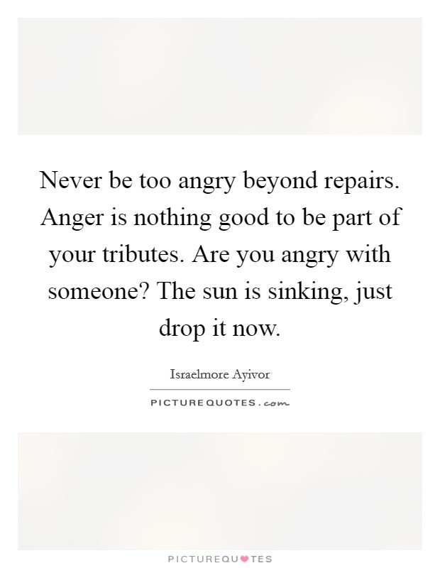 Never be too angry beyond repairs. Anger is nothing good to be part of your tributes. Are you angry with someone? The sun is sinking, just drop it now Picture Quote #1