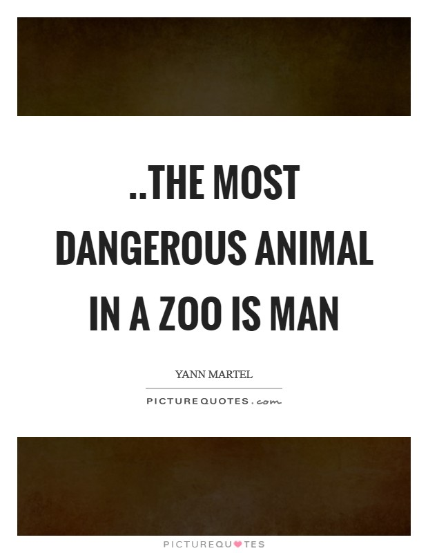..the most dangerous animal in a zoo is Man Picture Quote #1