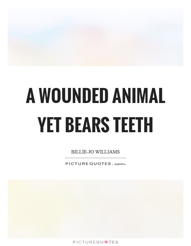 A wounded animal yet bears teeth Picture Quote #1