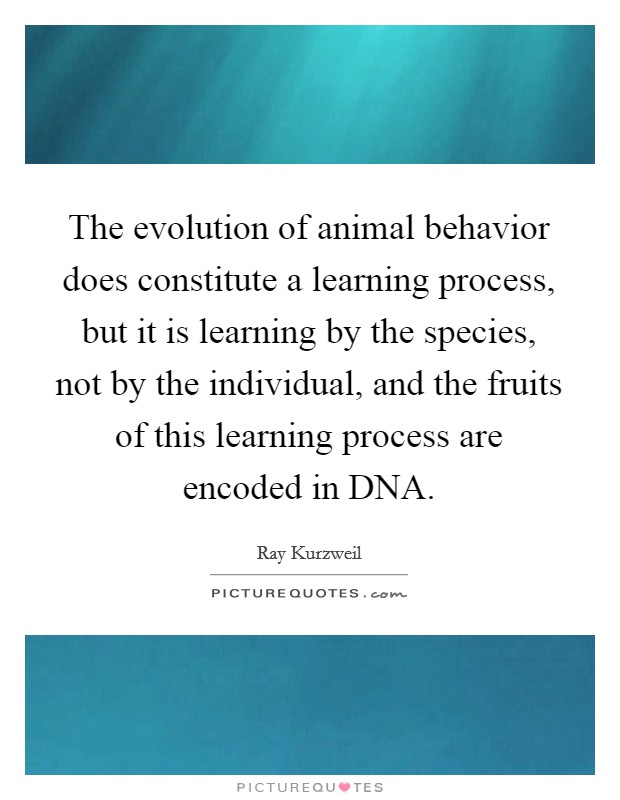 The evolution of animal behavior does constitute a learning process, but it is learning by the species, not by the individual, and the fruits of this learning process are encoded in DNA Picture Quote #1