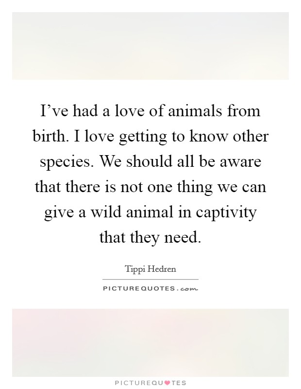 I've had a love of animals from birth. I love getting to know other species. We should all be aware that there is not one thing we can give a wild animal in captivity that they need Picture Quote #1