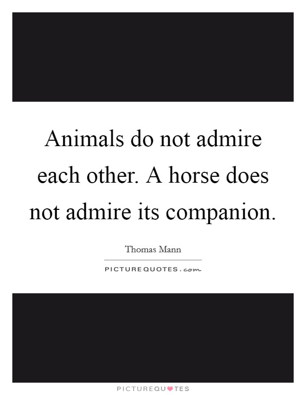 Animals do not admire each other. A horse does not admire its companion Picture Quote #1