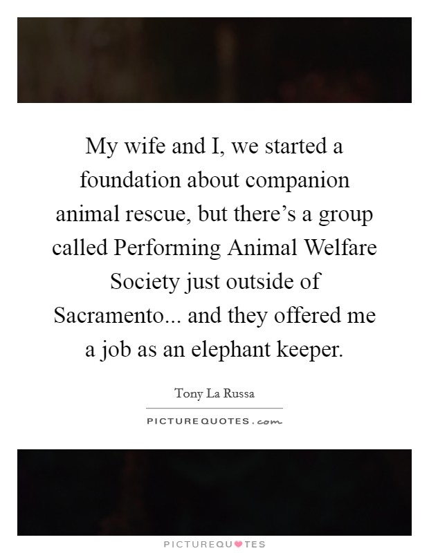 My wife and I, we started a foundation about companion animal rescue, but there's a group called Performing Animal Welfare Society just outside of Sacramento... and they offered me a job as an elephant keeper Picture Quote #1