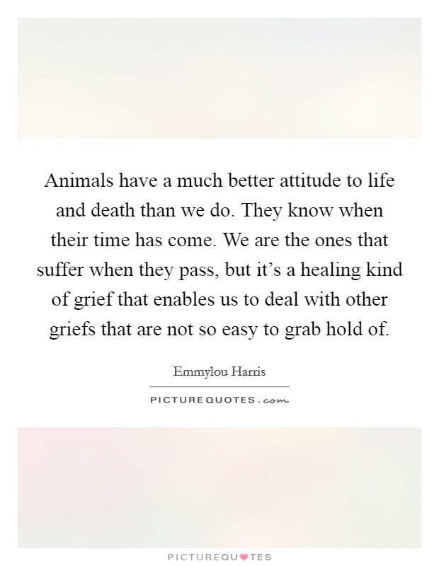 Animals have a much better attitude to life and death than we do. They know when their time has come. We are the ones that suffer when they pass, but it's a healing kind of grief that enables us to deal with other griefs that are not so easy to grab hold of. Picture Quote #1