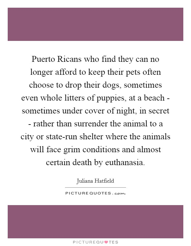 Puerto Ricans who find they can no longer afford to keep their pets often choose to drop their dogs, sometimes even whole litters of puppies, at a beach - sometimes under cover of night, in secret - rather than surrender the animal to a city or state-run shelter where the animals will face grim conditions and almost certain death by euthanasia Picture Quote #1