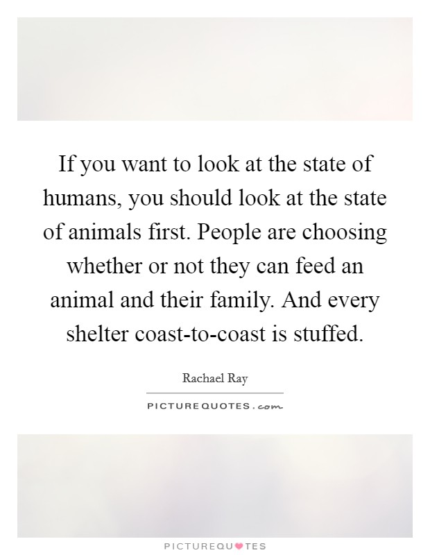 If you want to look at the state of humans, you should look at the state of animals first. People are choosing whether or not they can feed an animal and their family. And every shelter coast-to-coast is stuffed Picture Quote #1