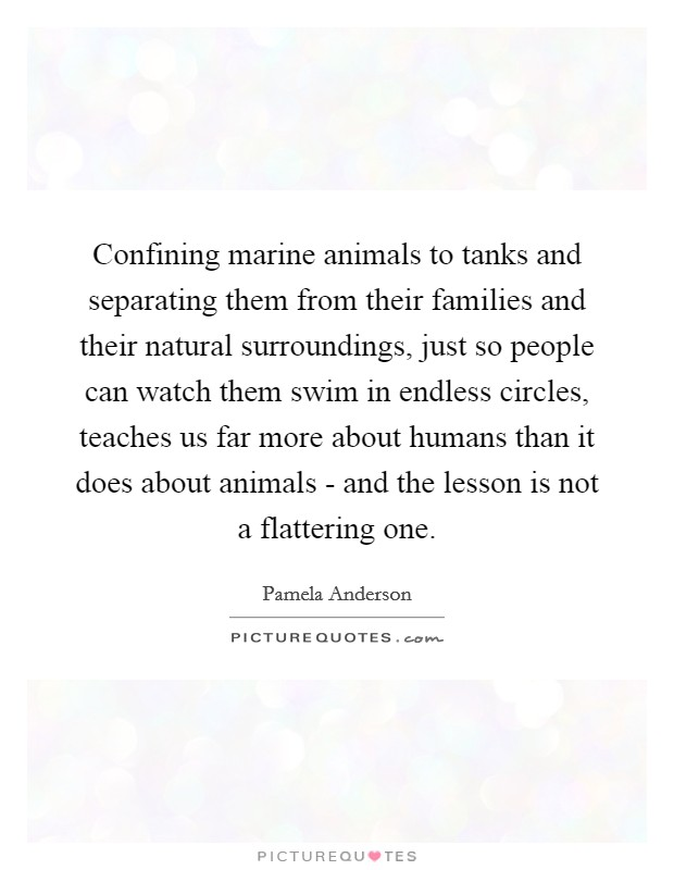 Confining marine animals to tanks and separating them from their families and their natural surroundings, just so people can watch them swim in endless circles, teaches us far more about humans than it does about animals - and the lesson is not a flattering one Picture Quote #1