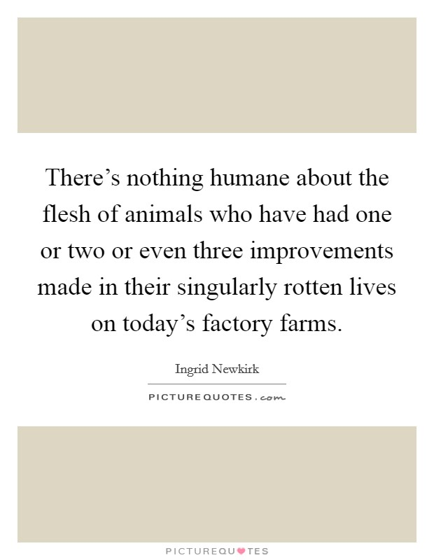 There's nothing humane about the flesh of animals who have had one or two or even three improvements made in their singularly rotten lives on today's factory farms Picture Quote #1