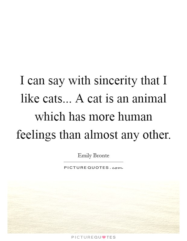 I can say with sincerity that I like cats... A cat is an animal which has more human feelings than almost any other. Picture Quote #1
