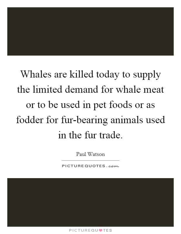 Whales are killed today to supply the limited demand for whale meat or to be used in pet foods or as fodder for fur-bearing animals used in the fur trade Picture Quote #1