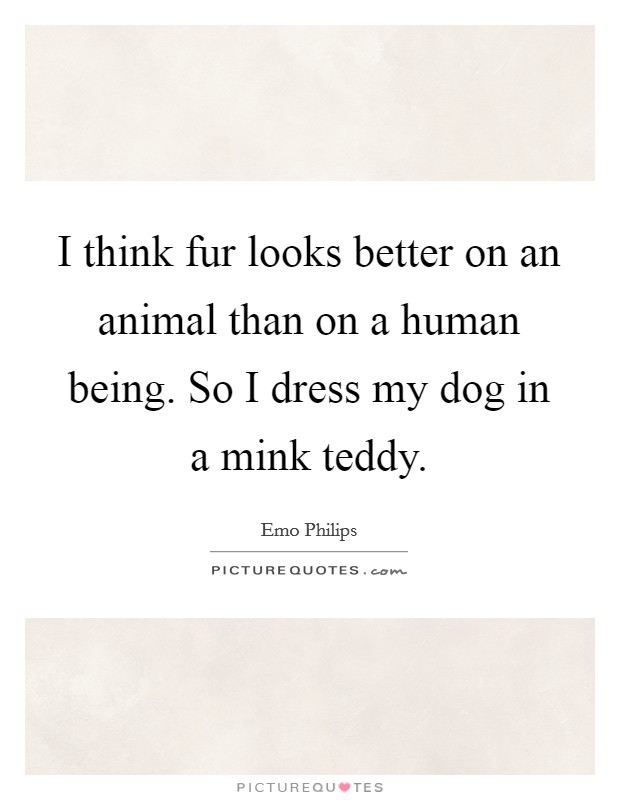 I think fur looks better on an animal than on a human being. So I dress my dog in a mink teddy Picture Quote #1