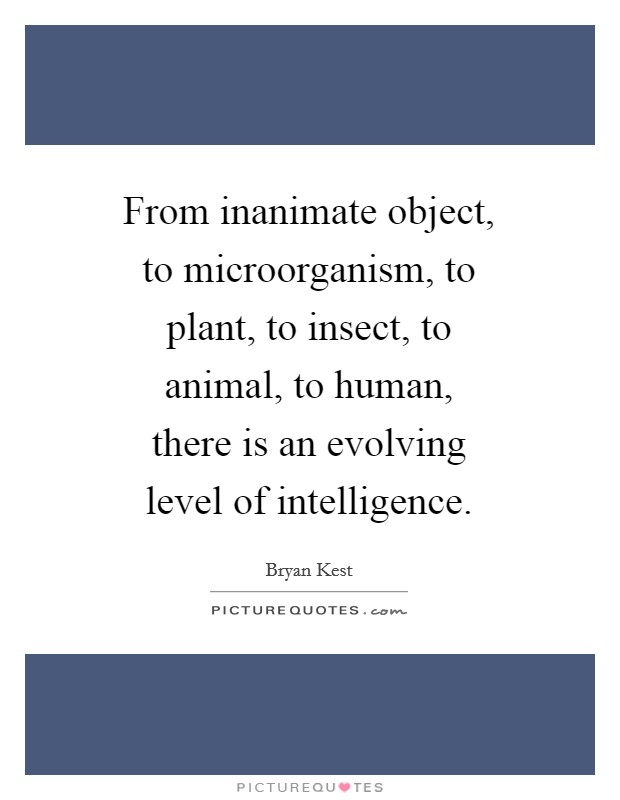 From inanimate object, to microorganism, to plant, to insect, to animal, to human, there is an evolving level of intelligence Picture Quote #1