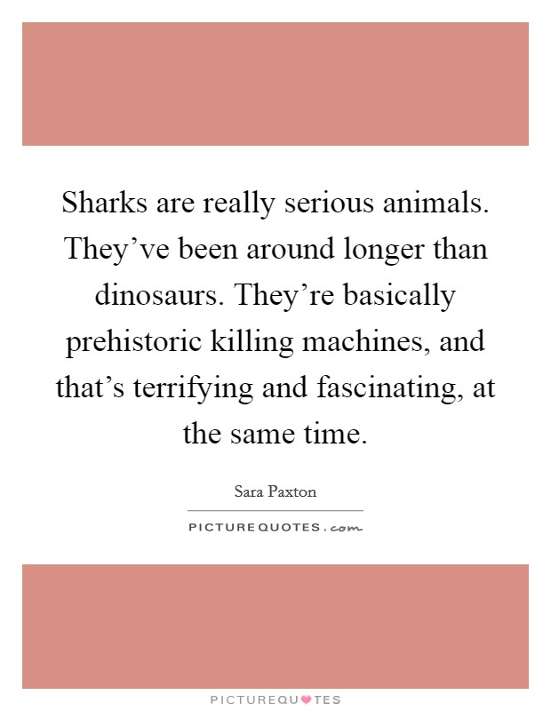 Sharks are really serious animals. They've been around longer than dinosaurs. They're basically prehistoric killing machines, and that's terrifying and fascinating, at the same time Picture Quote #1