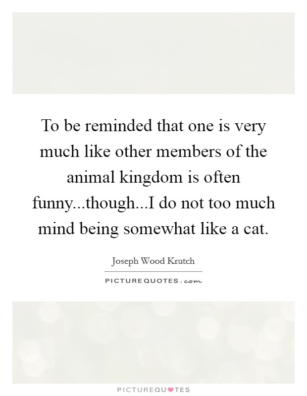 To be reminded that one is very much like other members of the animal kingdom is often funny...though...I do not too much mind being somewhat like a cat Picture Quote #1