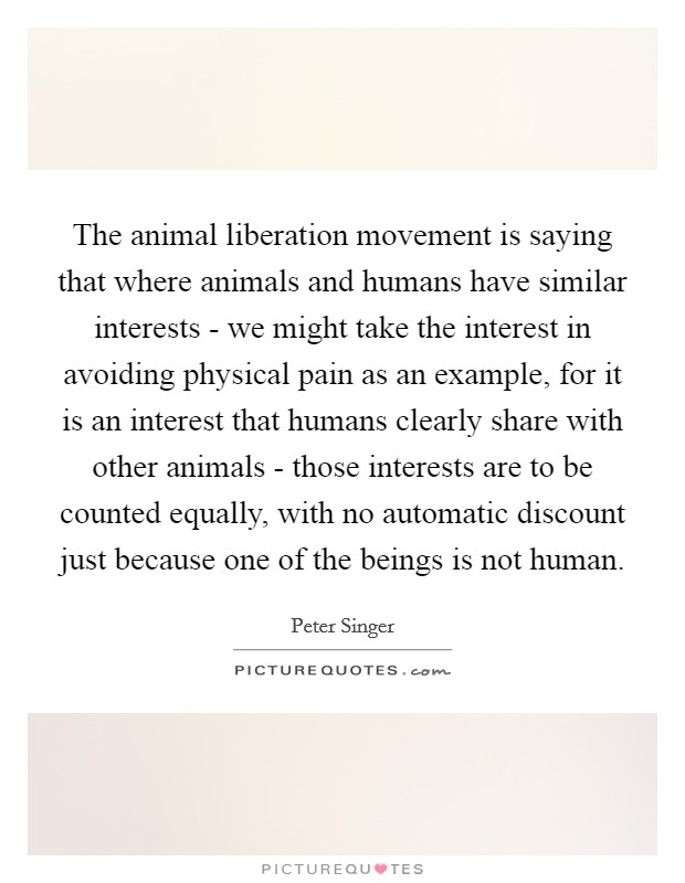 The animal liberation movement is saying that where animals and humans have similar interests - we might take the interest in avoiding physical pain as an example, for it is an interest that humans clearly share with other animals - those interests are to be counted equally, with no automatic discount just because one of the beings is not human Picture Quote #1