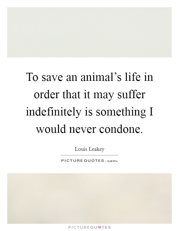 To save an animal's life in order that it may suffer indefinitely is something I would never condone Picture Quote #1