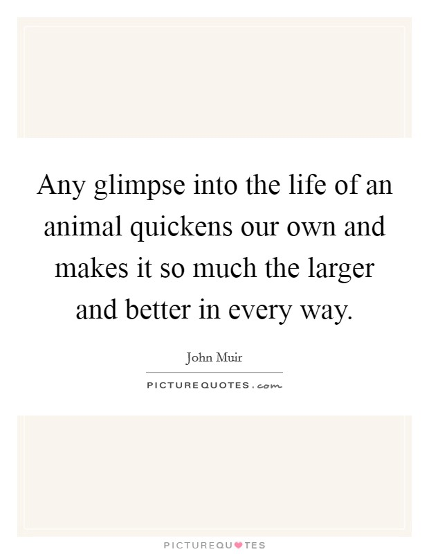Any glimpse into the life of an animal quickens our own and makes it so much the larger and better in every way Picture Quote #1