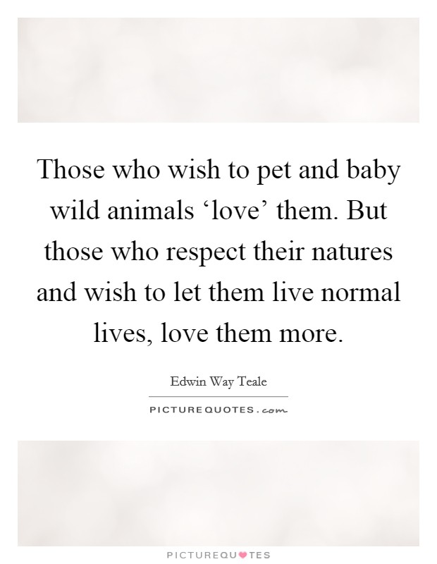 Those who wish to pet and baby wild animals 'love' them. But those who respect their natures and wish to let them live normal lives, love them more Picture Quote #1