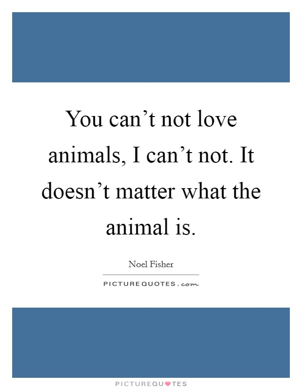 You can't not love animals, I can't not. It doesn't matter what the animal is. Picture Quote #1
