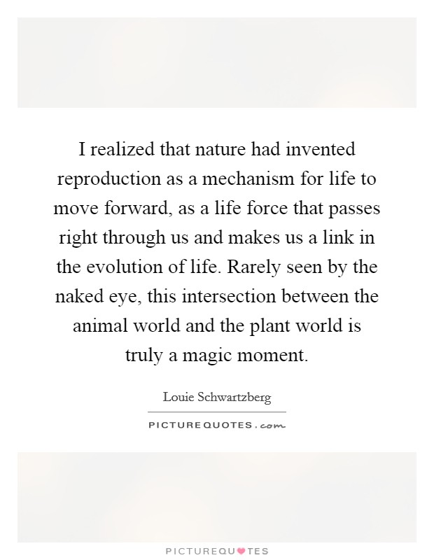 I realized that nature had invented reproduction as a mechanism for life to move forward, as a life force that passes right through us and makes us a link in the evolution of life. Rarely seen by the naked eye, this intersection between the animal world and the plant world is truly a magic moment Picture Quote #1