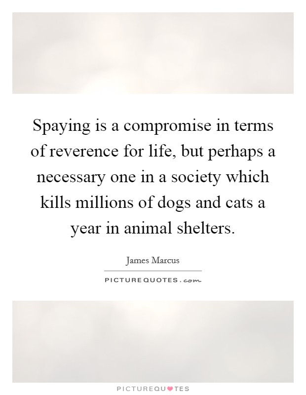 Spaying is a compromise in terms of reverence for life, but perhaps a necessary one in a society which kills millions of dogs and cats a year in animal shelters Picture Quote #1