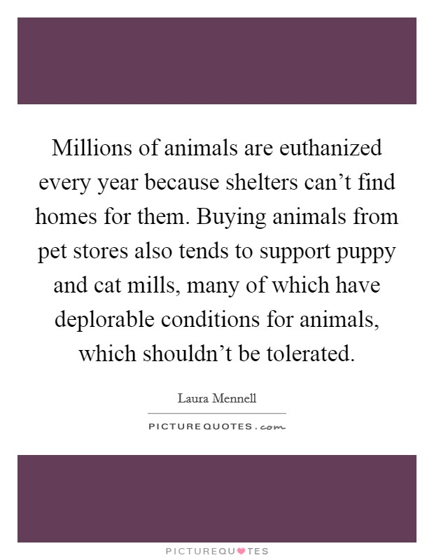 Millions of animals are euthanized every year because shelters can't find homes for them. Buying animals from pet stores also tends to support puppy and cat mills, many of which have deplorable conditions for animals, which shouldn't be tolerated Picture Quote #1