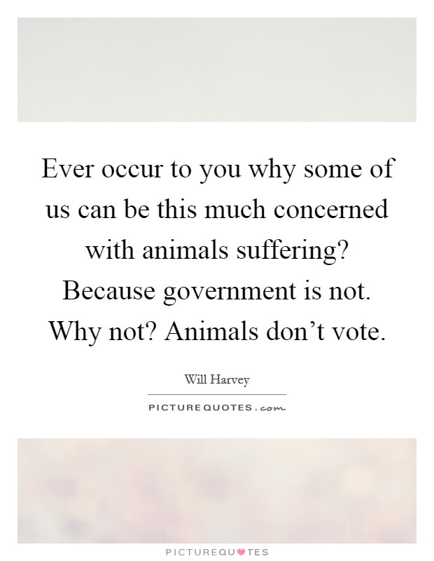 Ever occur to you why some of us can be this much concerned with animals suffering? Because government is not. Why not? Animals don't vote Picture Quote #1