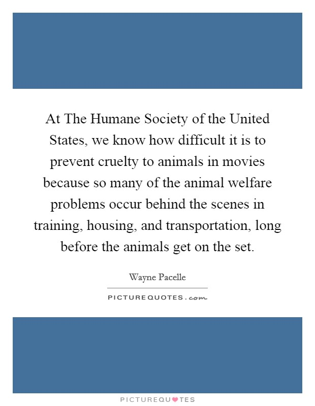 At The Humane Society of the United States, we know how difficult it is to prevent cruelty to animals in movies because so many of the animal welfare problems occur behind the scenes in training, housing, and transportation, long before the animals get on the set Picture Quote #1