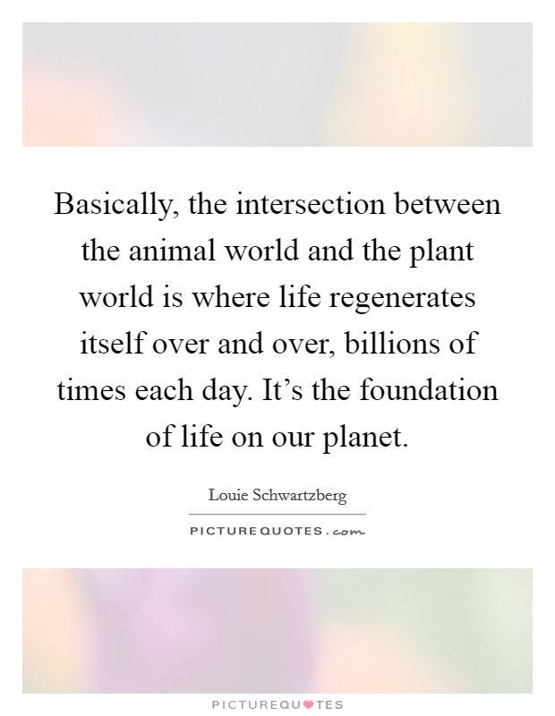 Basically, the intersection between the animal world and the plant world is where life regenerates itself over and over, billions of times each day. It's the foundation of life on our planet Picture Quote #1