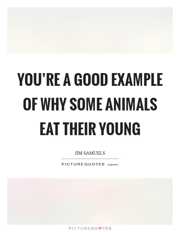 You're a good example of why some animals eat their young Picture Quote #1