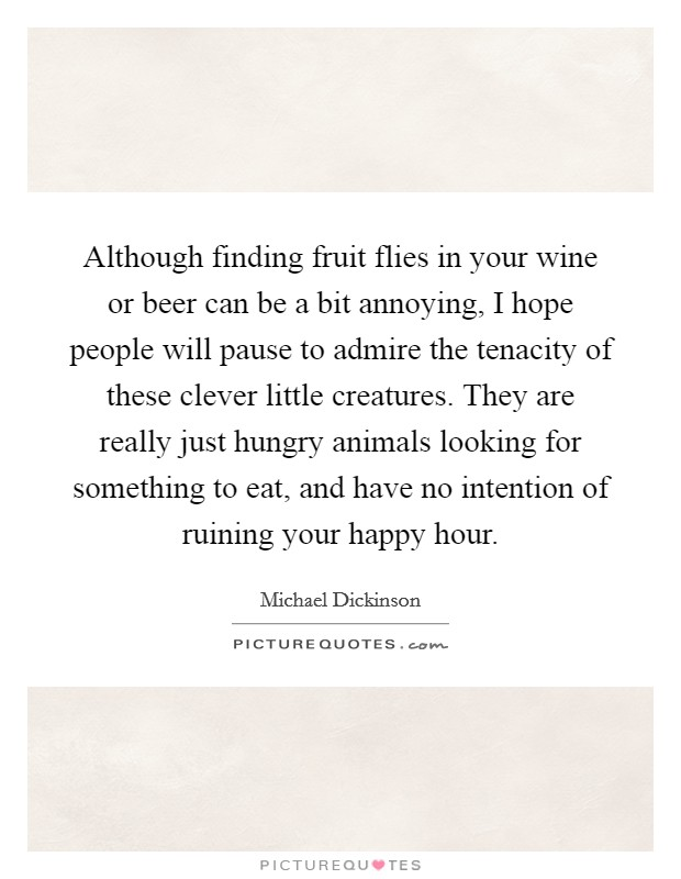 Although finding fruit flies in your wine or beer can be a bit annoying, I hope people will pause to admire the tenacity of these clever little creatures. They are really just hungry animals looking for something to eat, and have no intention of ruining your happy hour Picture Quote #1