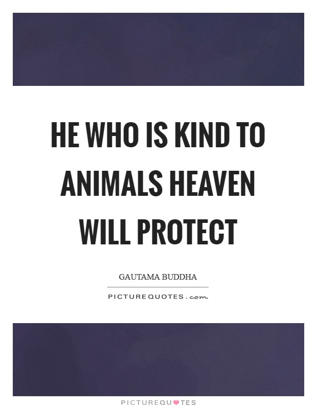 He who is kind to animals heaven will protect Picture Quote #1