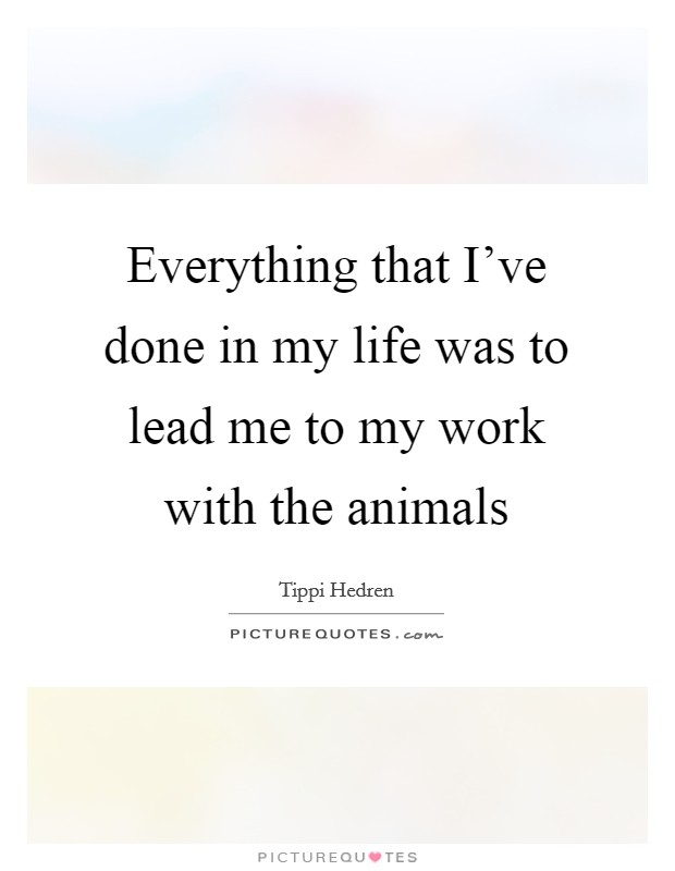Everything that I've done in my life was to lead me to my work with the animals Picture Quote #1