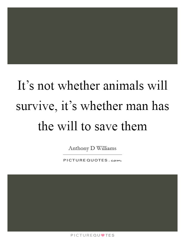 It's not whether animals will survive, it's whether man has the will to save them Picture Quote #1