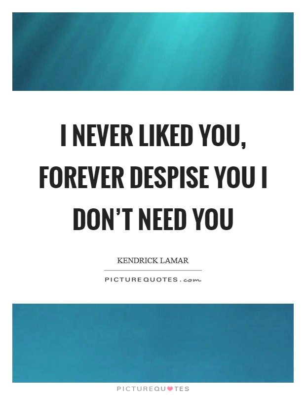 I never liked you, forever despise you I don't need you Picture Quote #1
